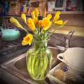 daffodills iin vase by sink